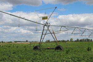 Instalação de rega na exploração agrícola